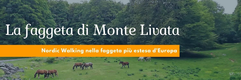 La faggeta di Monte Livata