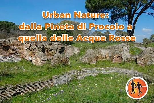 Domenica 24 Marzo Urban Nature: dalla Pineta di Procoio a quella delle Acque Rosse