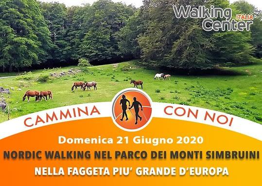Domenica 21 Giugno – Alla scoperta della faggeta più estesa d'Europa nel cuore dei Monti Simbruini