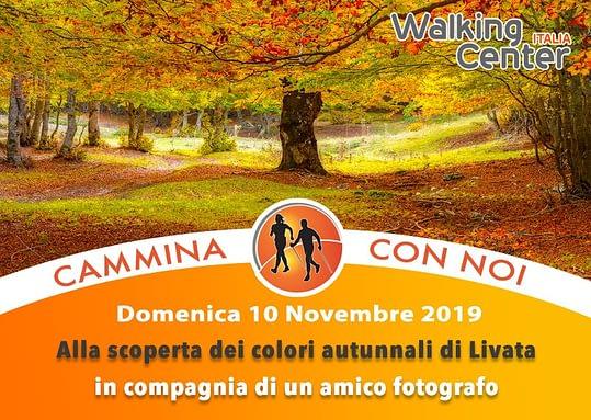 Domenica 10 Novembre Alla scoperta dei colori autunnali di Livata. .   in compagnia di un amico fotografo